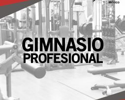 EQUIPO PARA GIMNASIO PROFESIONAL BODY SOLID